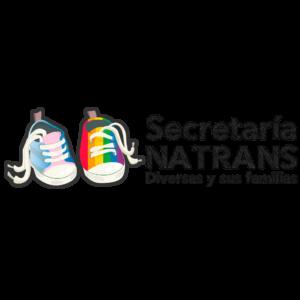 Secretaría de Infancias y Adolescencias Trans y Familias - FALGBT